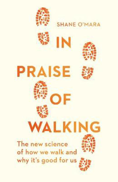 Picture of In Praise of Walking